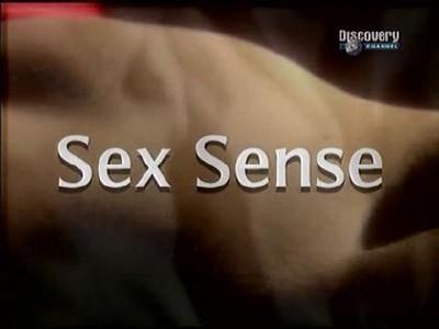 Чувство секса культура секса sex sense
